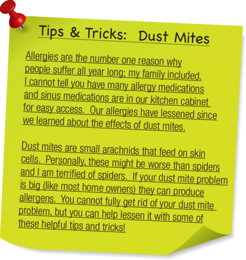 tips and tricks dust mites