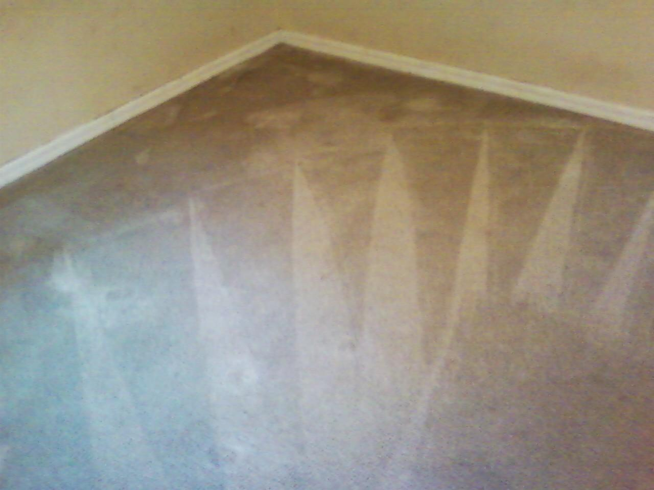 CCS carpet after
