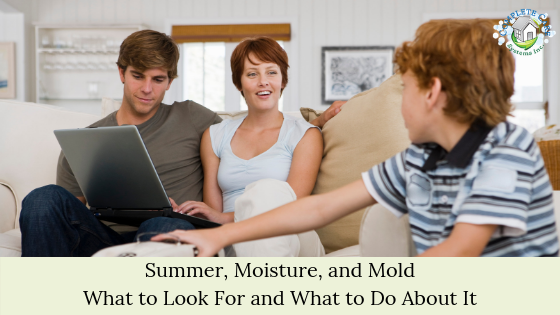Summer, Moisture, and Mold What to Look For and What to Do About It