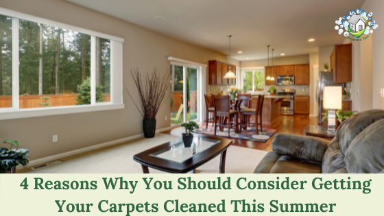 4 Reasons Why You Should Consider Getting Your Carpets Cleaned This Summer